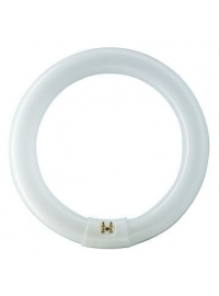 Tub Fluorescent TL-E 32W/830 1CT/12