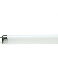Tub Fluorescent TL-D 58W Snow White 1SL/25