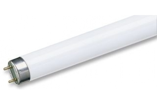 Tub Fluorescent TL-D 18W Snow White 1Sl/25